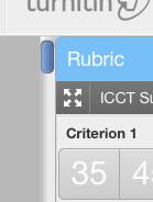 Rubric button